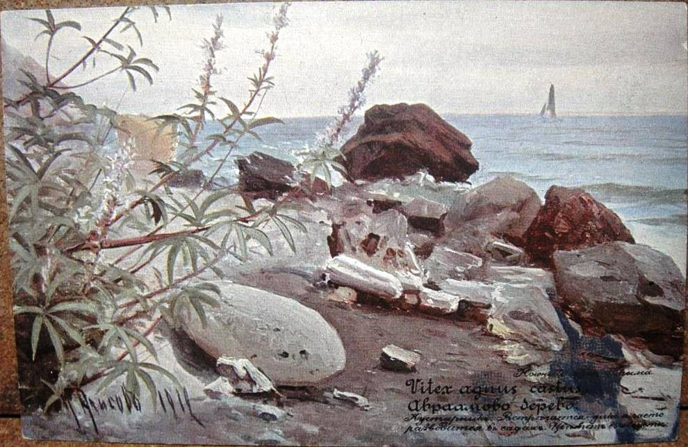Алисов М. А. 3 Флора Крыма. Авраамово дерево
